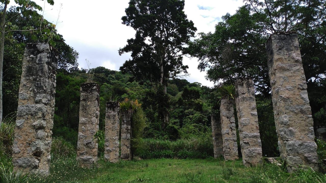 Ruínas do Engenho da Fazenda Vargem Grande do Parque